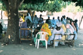 villagers gather under a tree for a training session