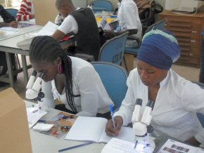 teachers using microscopes