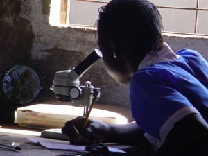 student using a microscope at a school which recieved one
