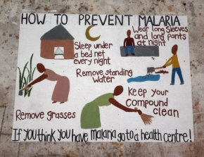 health murals - preventing malaria